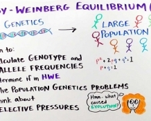 **Pricing for Member and Non-member**  Population Genetics